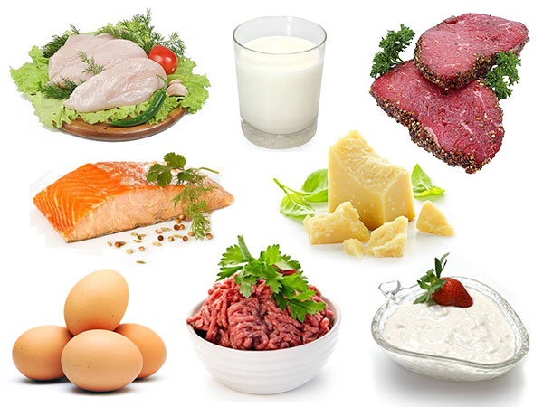 4, Protein 1