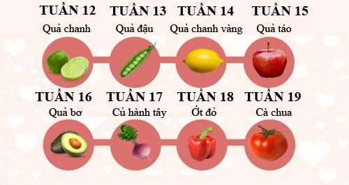 Sự phát triển của thai nhi trong 3 tháng giữa thai kỳ P.2 1