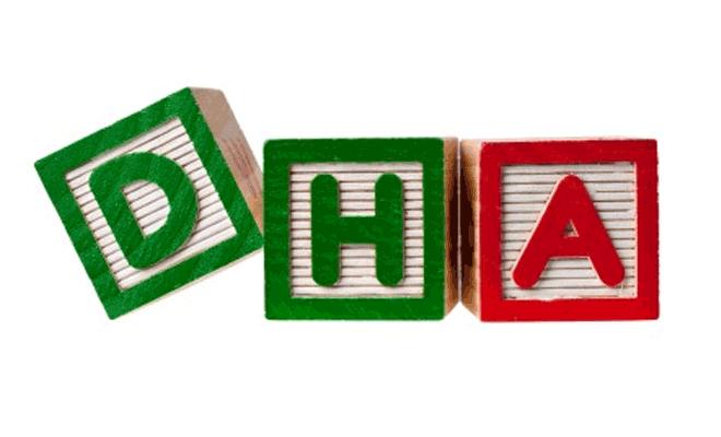 5 thực phẩm quý hơn vàng giàu DHA giúp thai nhi thông minh 1