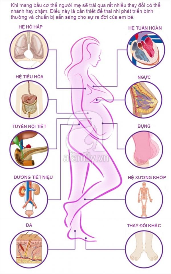 Khi mang thai cơ thể thay đổi như thế nào?