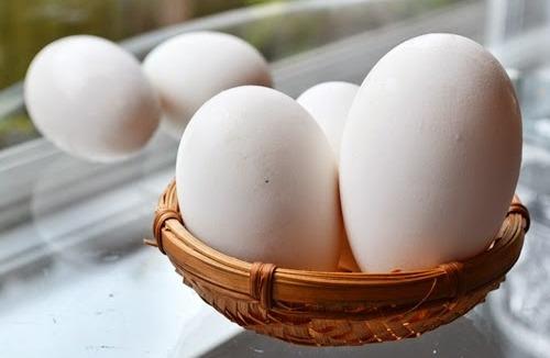 Bà bầu ăn trứng ngỗng từ khi nào cho thai nhi thông minh