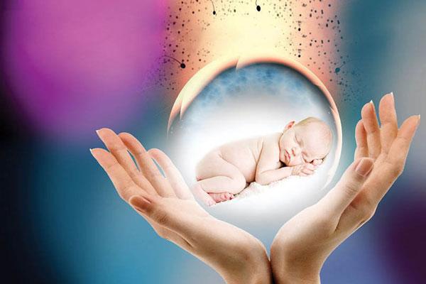 Dị tật ống thần kinh thai nhi: Mẹ đừng chủ quan để con trẻ phải chịu bất hạnh 1