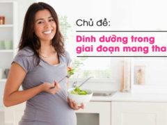 """Chương trình Sống khỏe: """"Dinh dưỡng trong giai đoạn mang thai"""""""